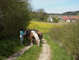 Bild zu Halbtages-Ritt in den Fr�hling - Osterritt