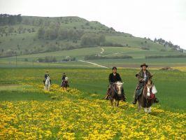 Bild zu *** Die Keltenspur I im Ries - Reise zu Pferd in die Bronzezeit