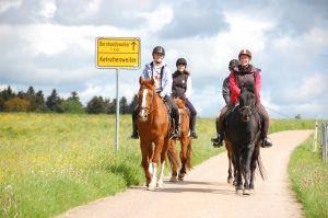 Bild zu Pferde erleben, Reiterferien für Kids ab 10 Jahren.